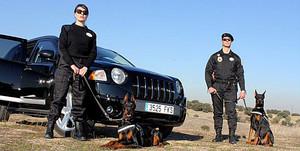 perros vigilantes