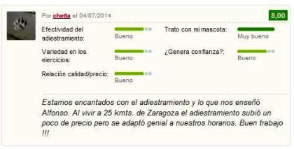 adiestrador de perros Zaragoza semper fidelis